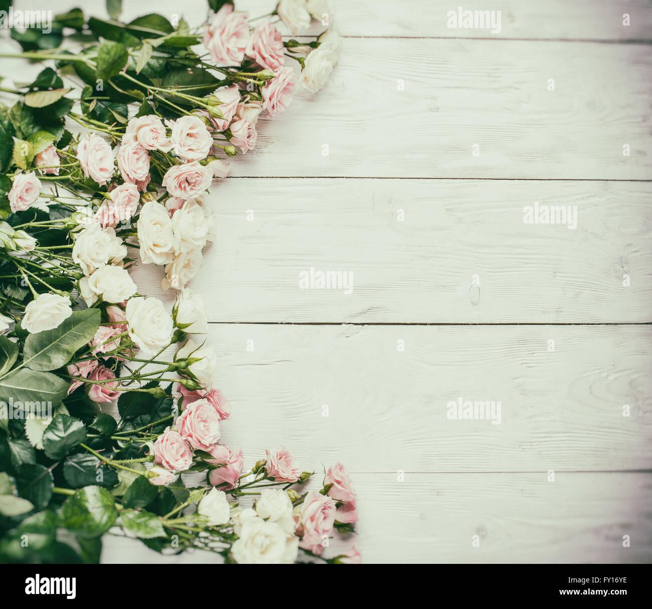 zarte frische rosen auf dem wei en hintergrund aus holz vintage stil stockfoto bild 102674978. Black Bedroom Furniture Sets. Home Design Ideas