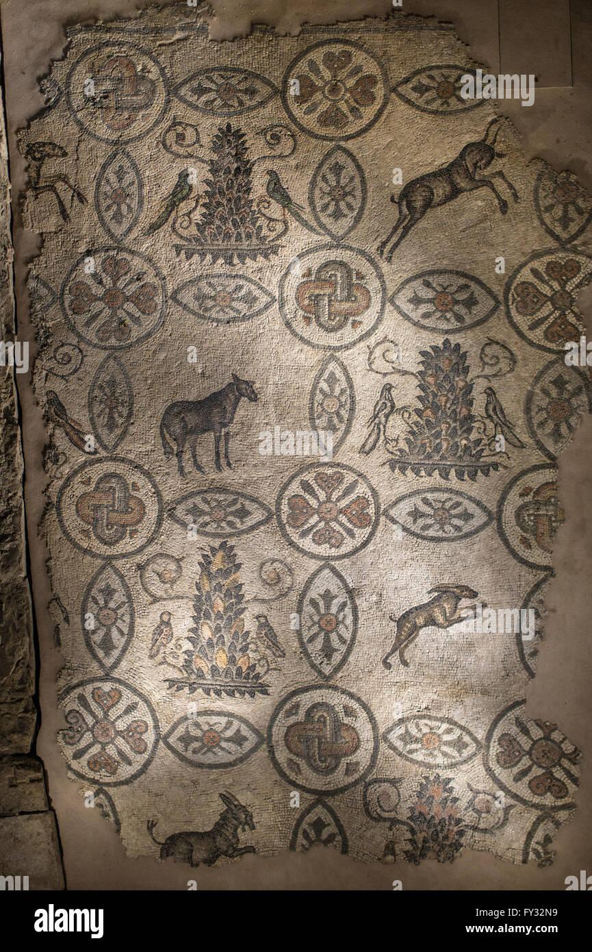 Mosaik Boden mit tierischen Symbolik, 4. Jahrhundert ausgesetzt im Glockenturm der romanischen Basilika, Aquileia, Stockbild