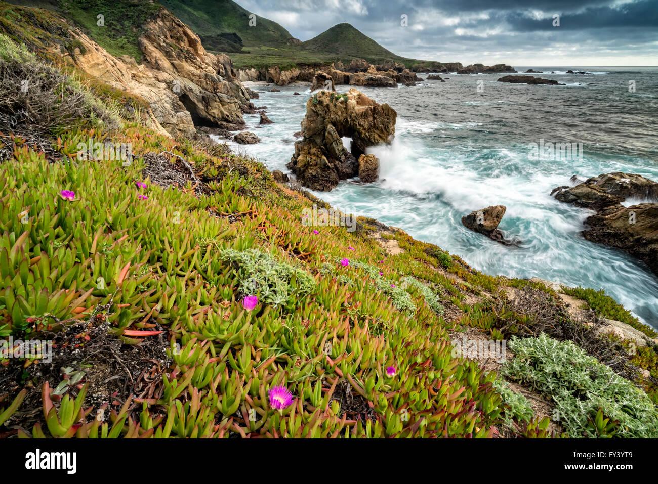 Eis-Anlage Küstenlinie, Big Sur, Kalifornien Stockbild