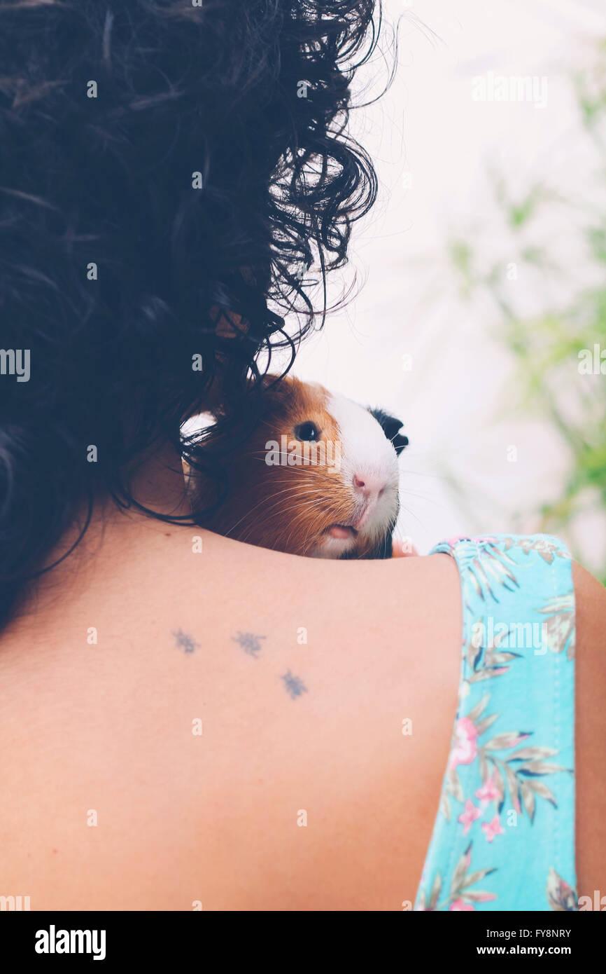 Rückansicht der jungen Frau mit Meerschweinchen auf die Schulter Stockbild
