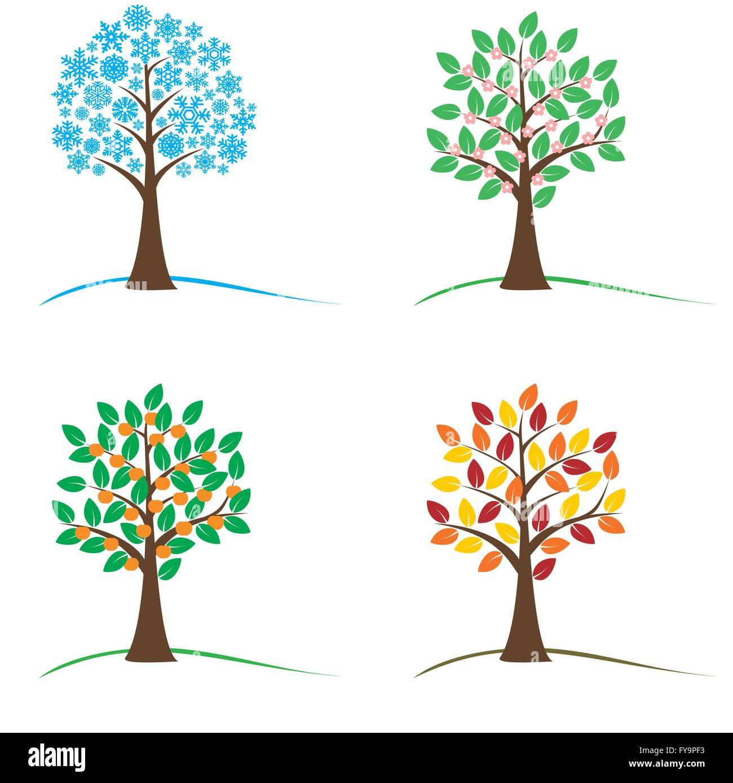 Baum In Vier Jahreszeiten Frühling Sommer Herbst Und Winter