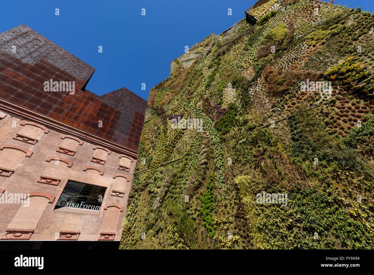 Madrid. Spanien. CaixaForum Madrid, Vertical Garden (2008) vom französischen Botaniker Patrick Blanc, Paseo Stockbild