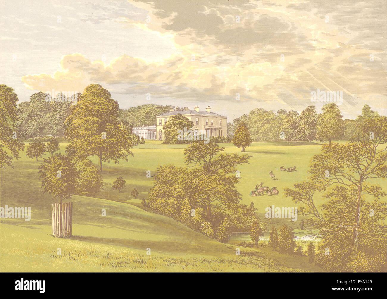 ASHCOMBE PARK, Lauch, Staffordshire (Sneyd), antike print 1892 Stockfoto