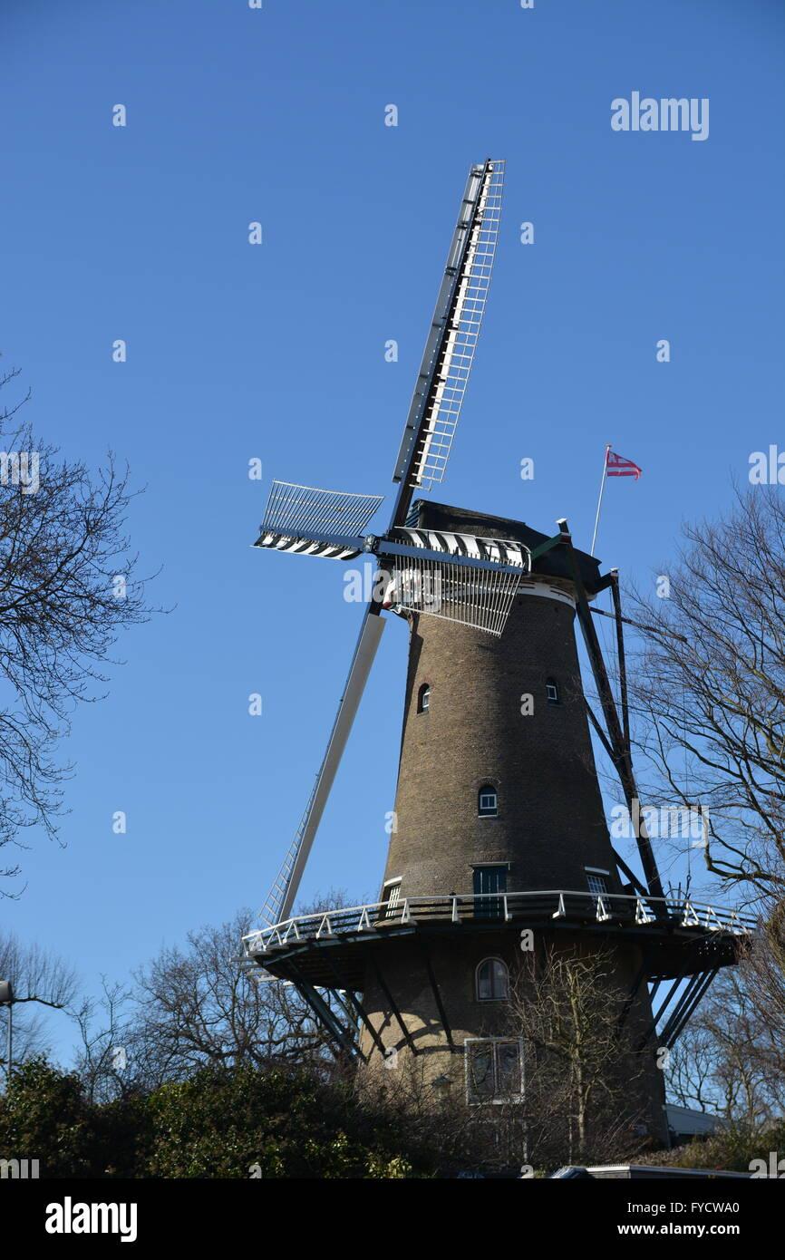 Alkmaar, Niederlande - 27. März 2016: Windmühle mit blauem Himmel in Alkmaar Stockfoto
