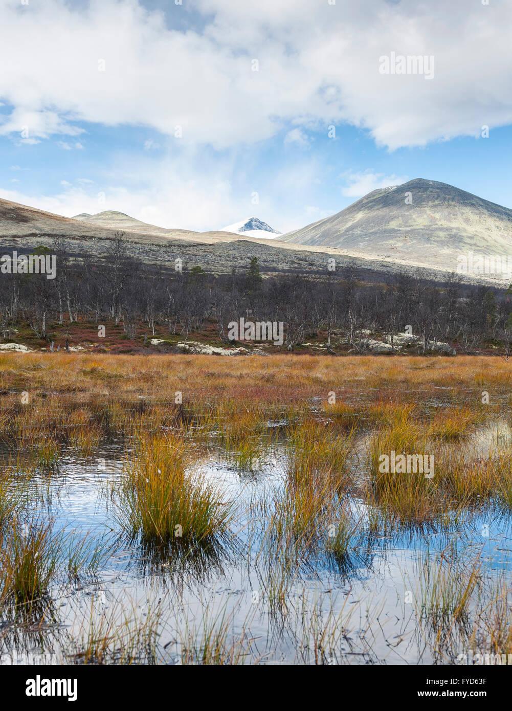 Feuchtgebiet und Bergen, Norwegen Stockbild