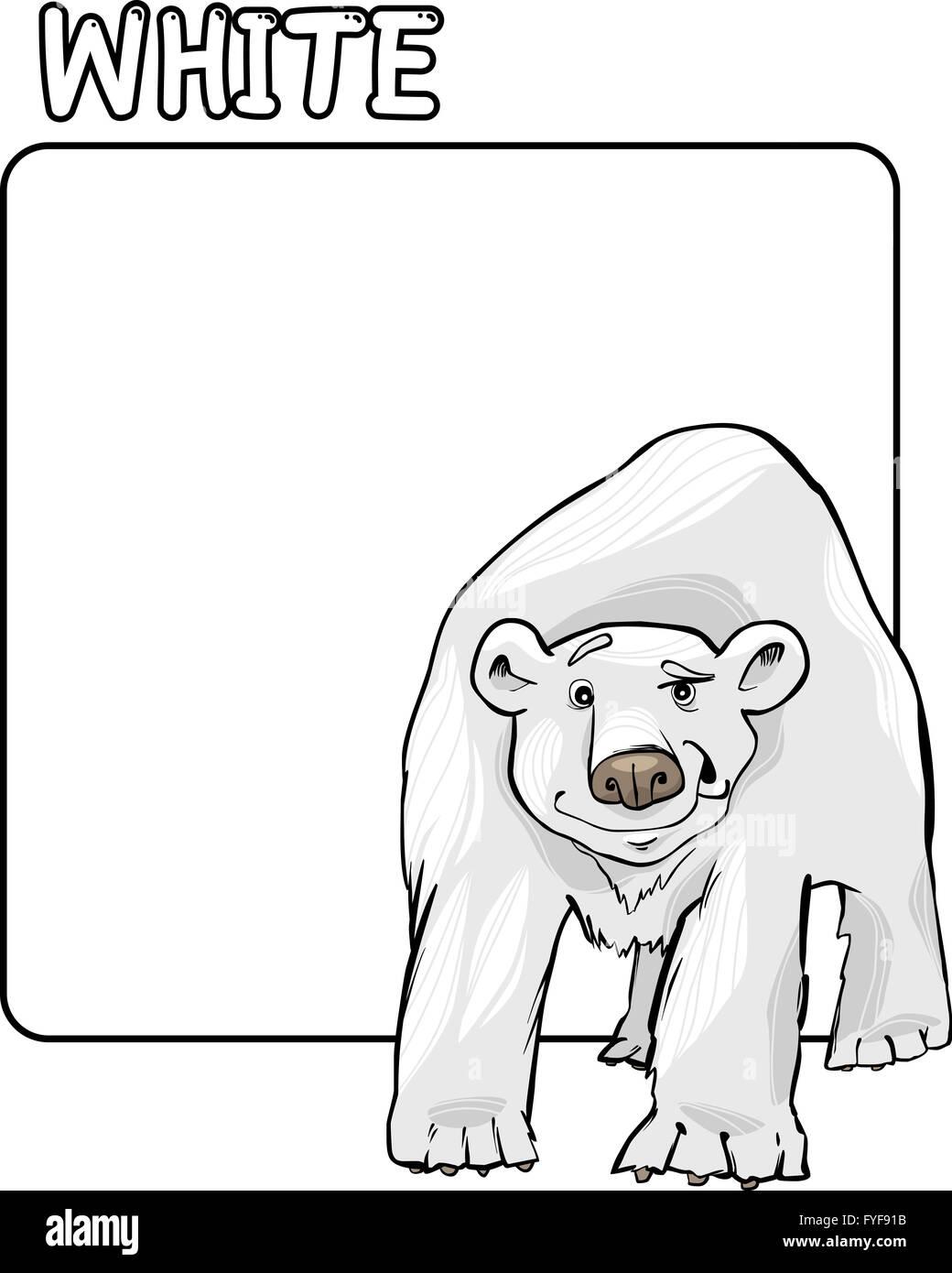 Niedlich Eisbär Anatomie Bilder - Anatomie Von Menschlichen ...