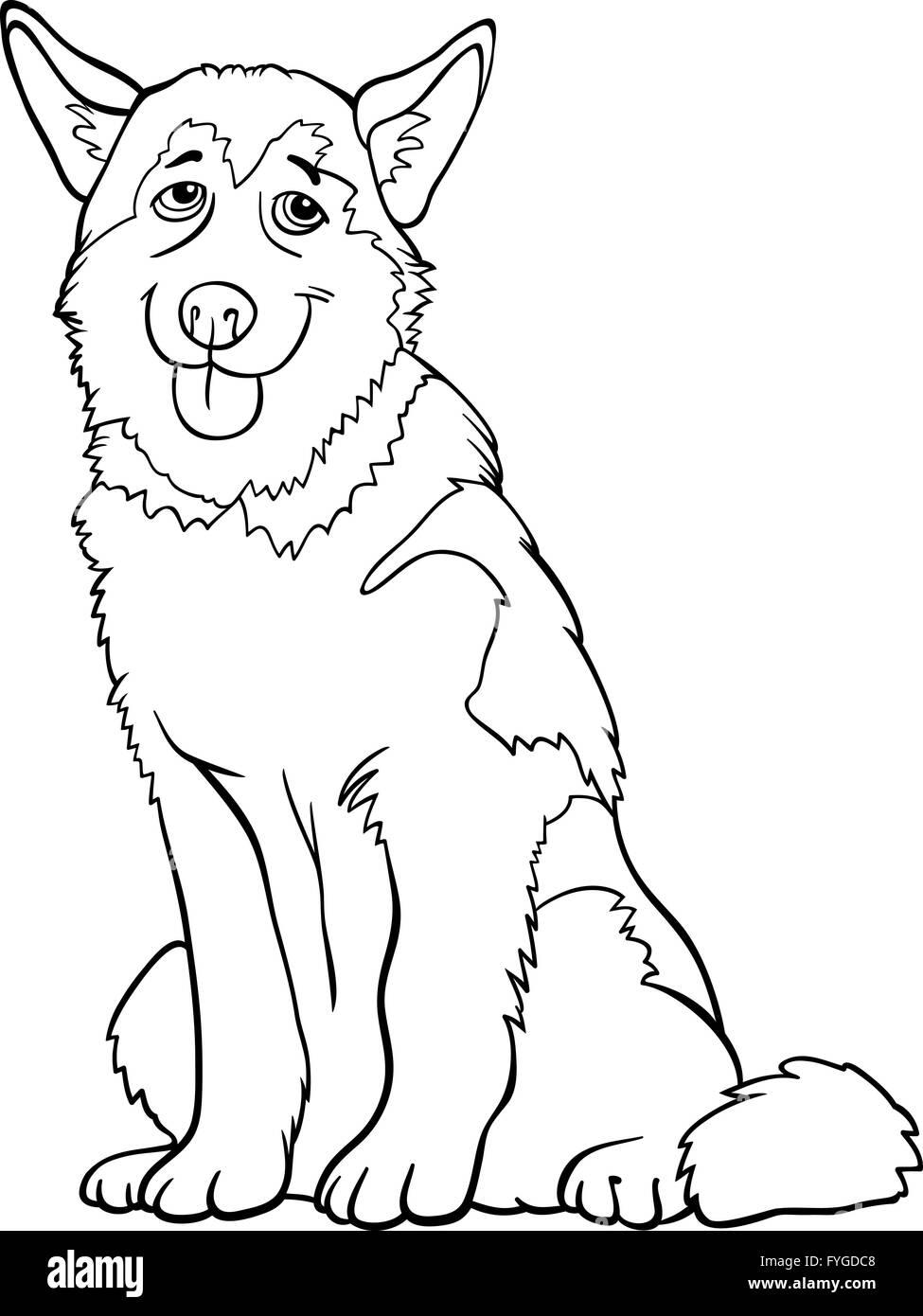 Husky Und Malamute Hund Cartoon Zum Ausmalen Stockfoto Bild
