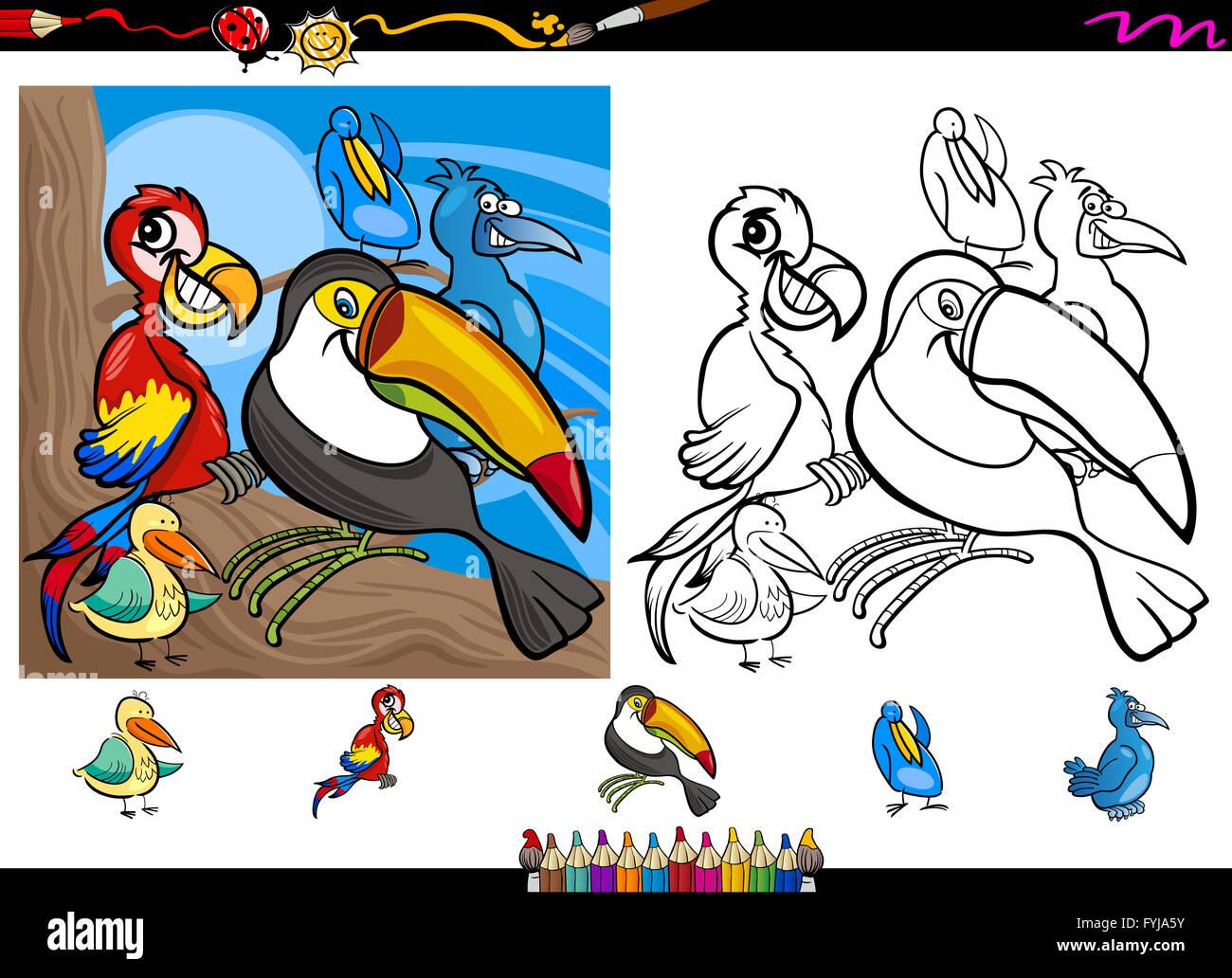 exotische Vögel Cartoon Malvorlagen eingestellt Stockfoto, Bild ...