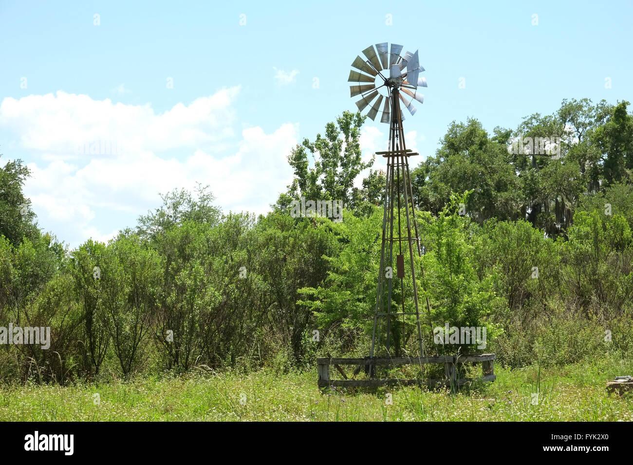 Kleinen Wind angetriebene Pumpe auf einer Farm oder Ranch in Zentral-Florida, USA Stockbild
