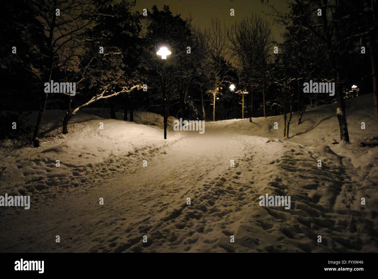 Schweden. Stockholm. Verschneiten Park in der Nacht. Stockfoto