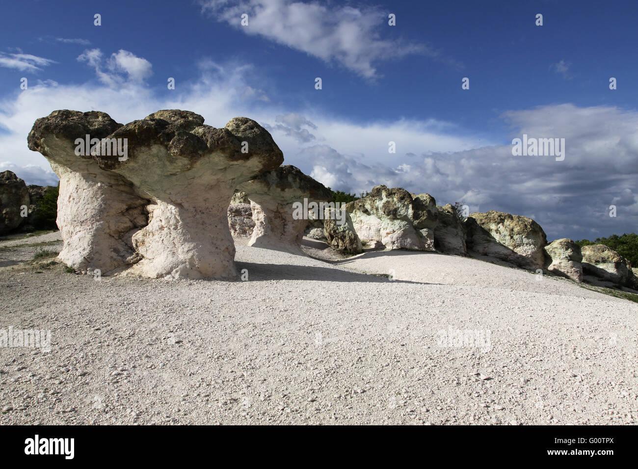 Stein Pilze Naturphänomen Stockbild
