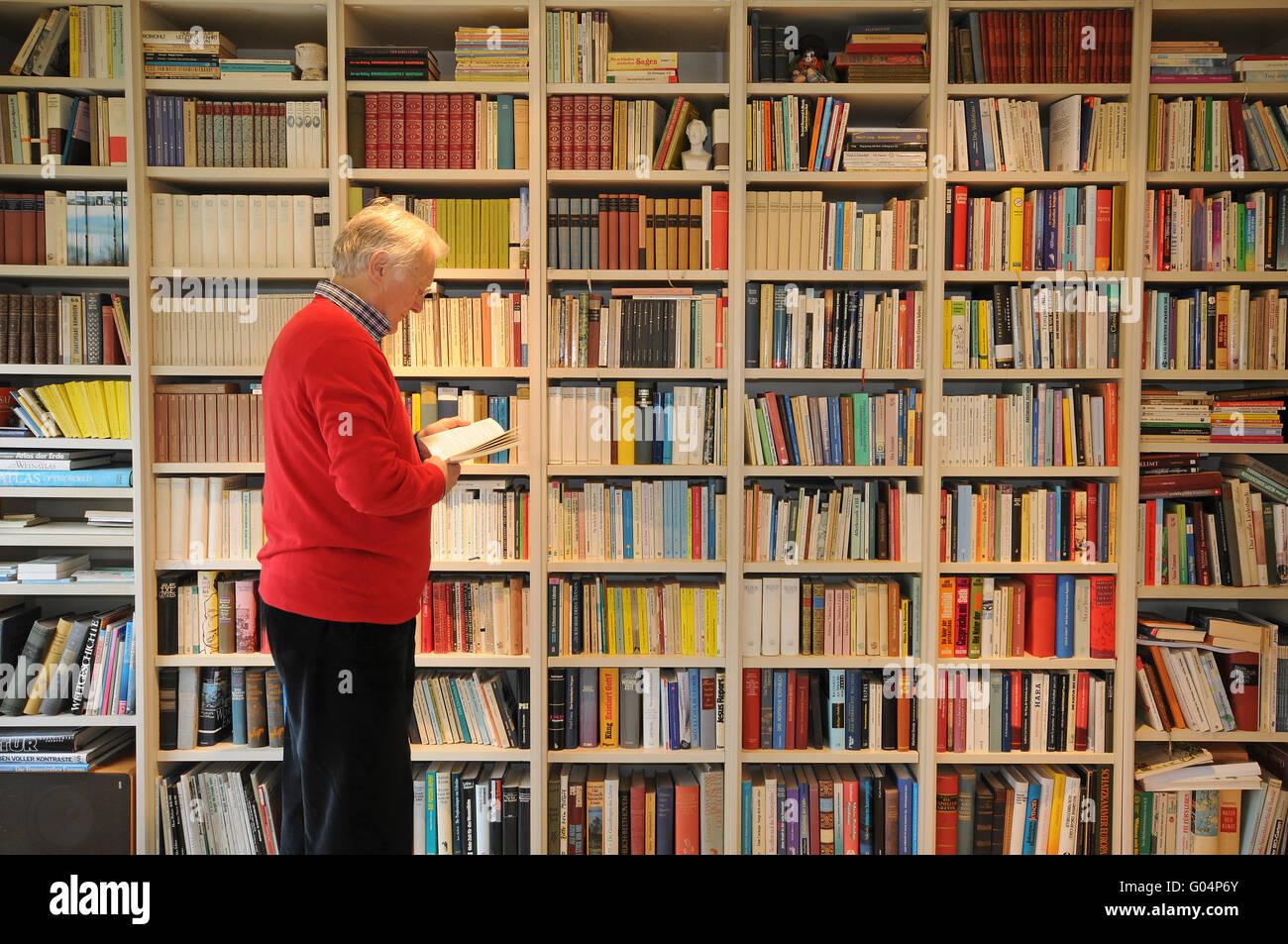 Regal mit Büchern. Stockbild