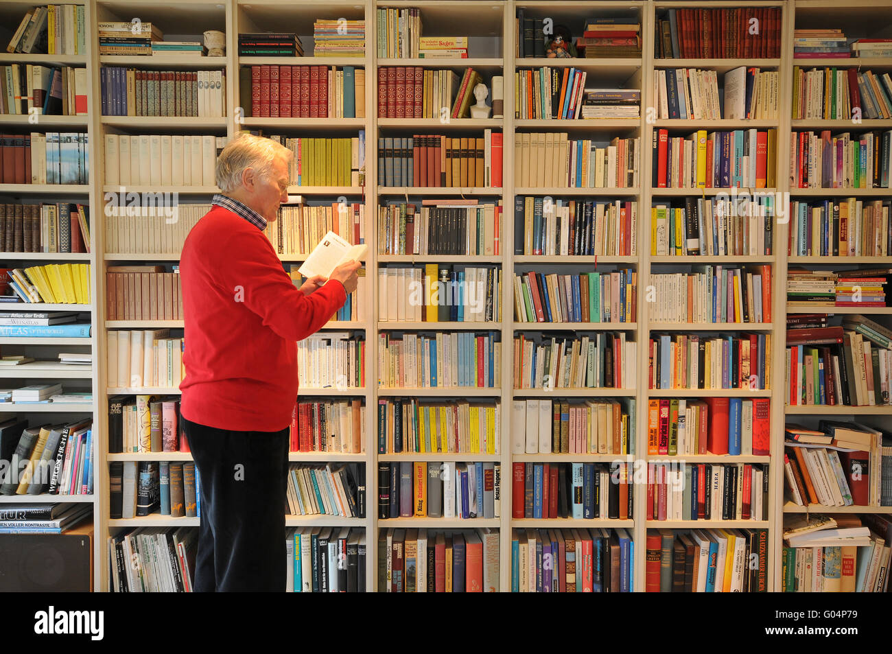 Regal mit Büchern Stockbild
