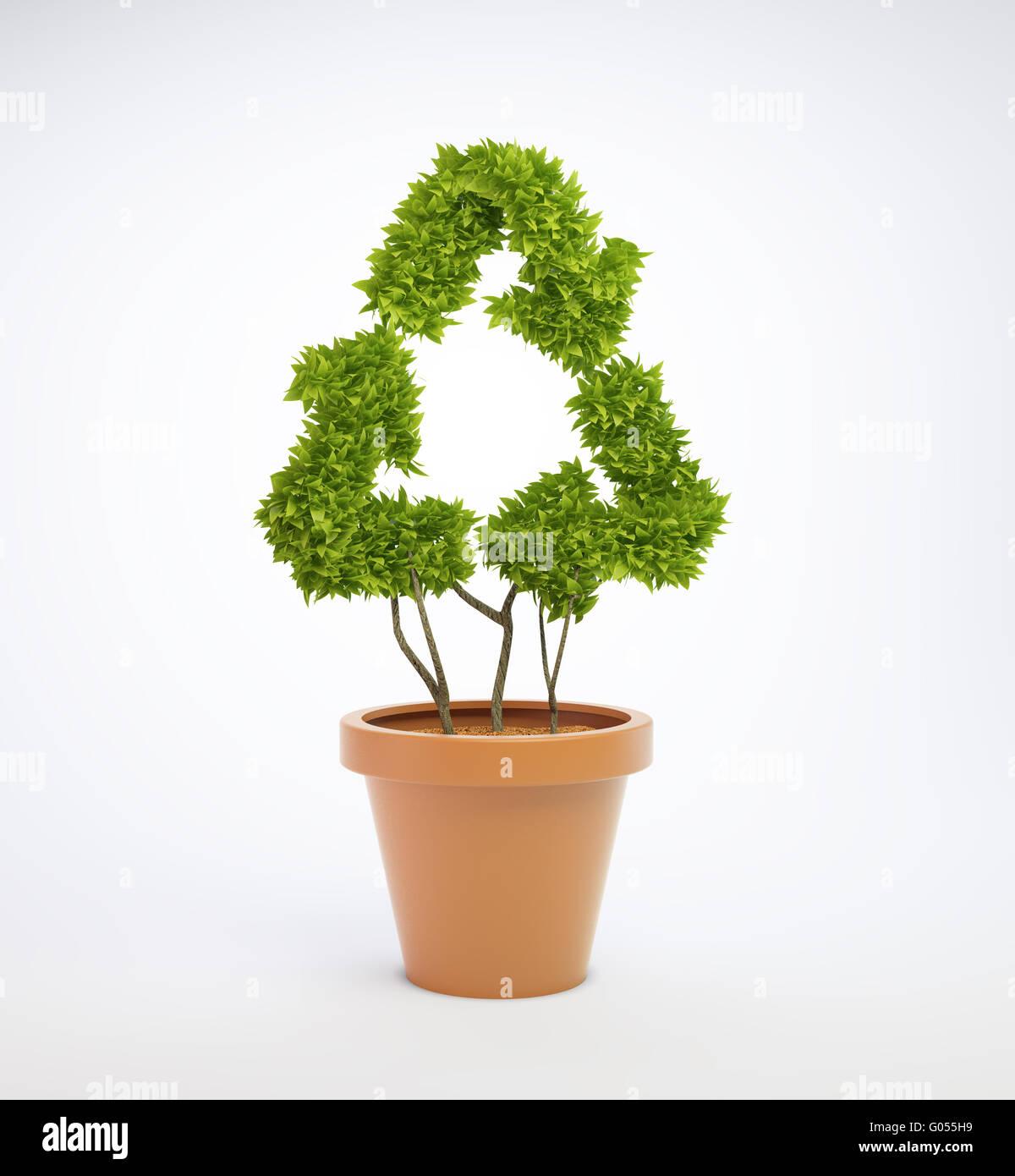 Pflanzen Sie in einem Topf, geformt wie ein recycling-symbol Stockbild