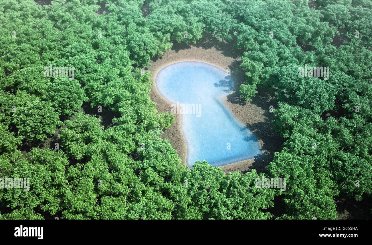 kleines Schlüsselloch geformten Teich, umgeben von einem Wald Stockbild