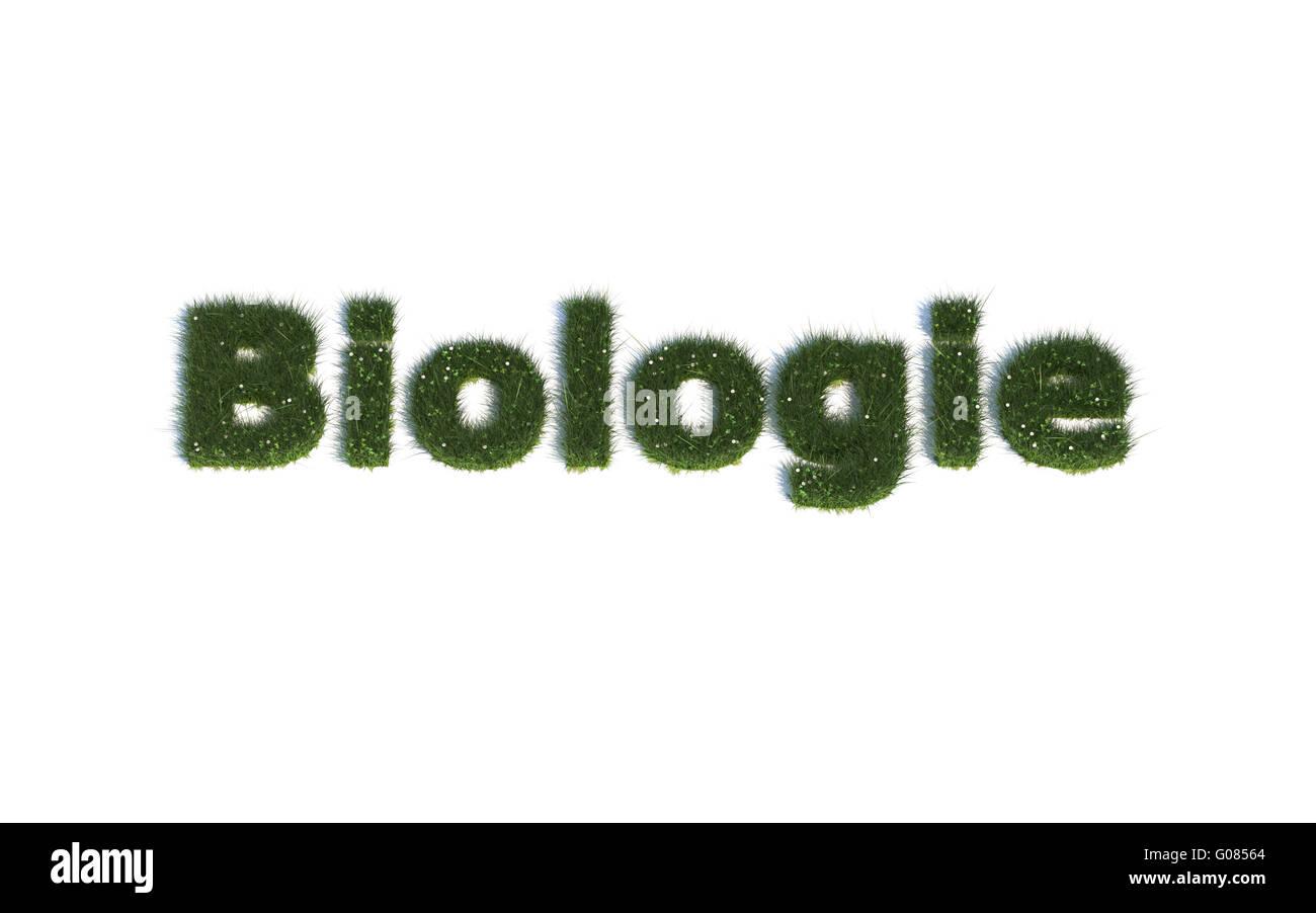 Biologie: Serie Schriftarten aus realistischen Grass Sprache G (Biologie) Stockbild