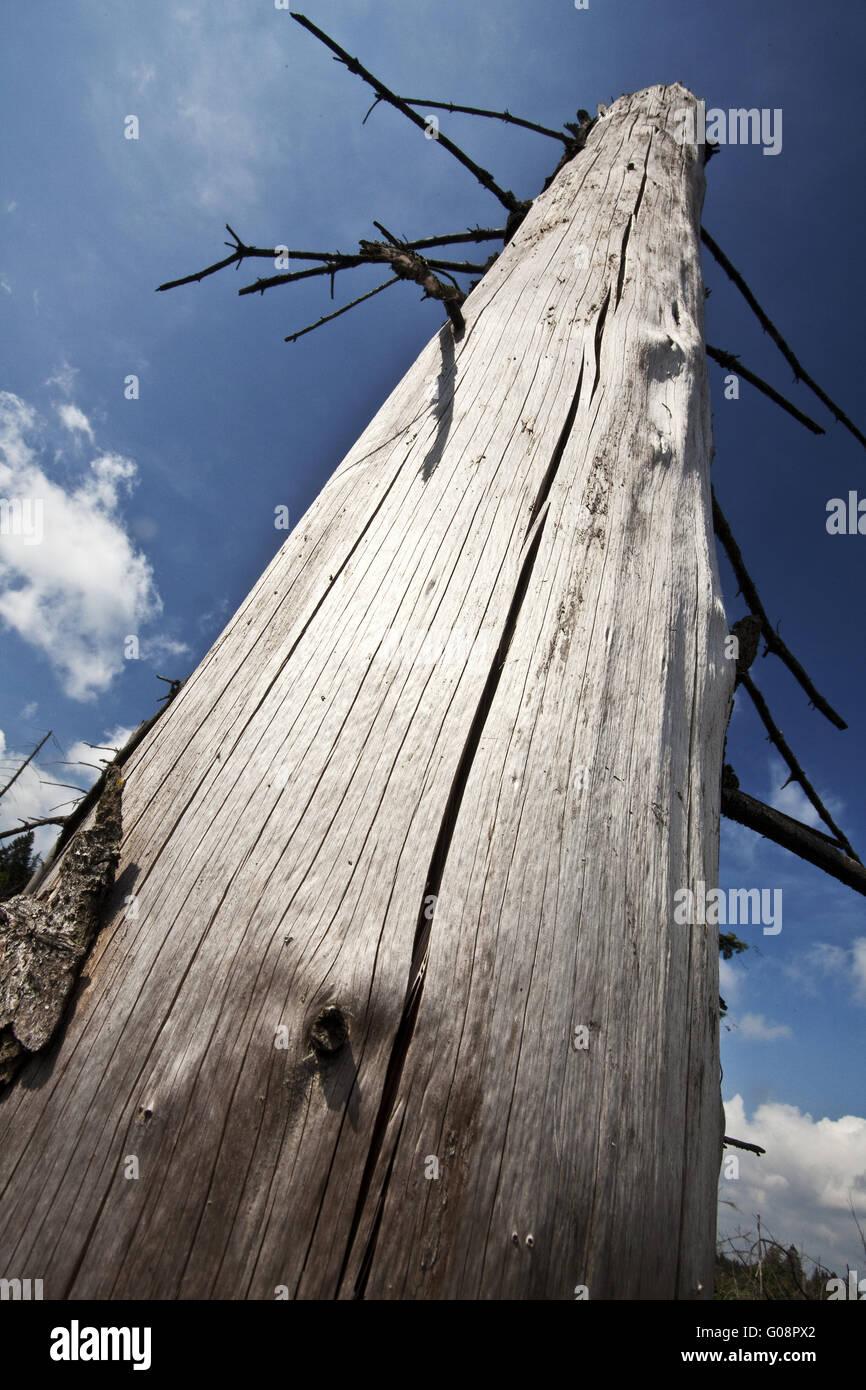 Durcheinander Stockfotos & Durcheinander Bilder - Alamy