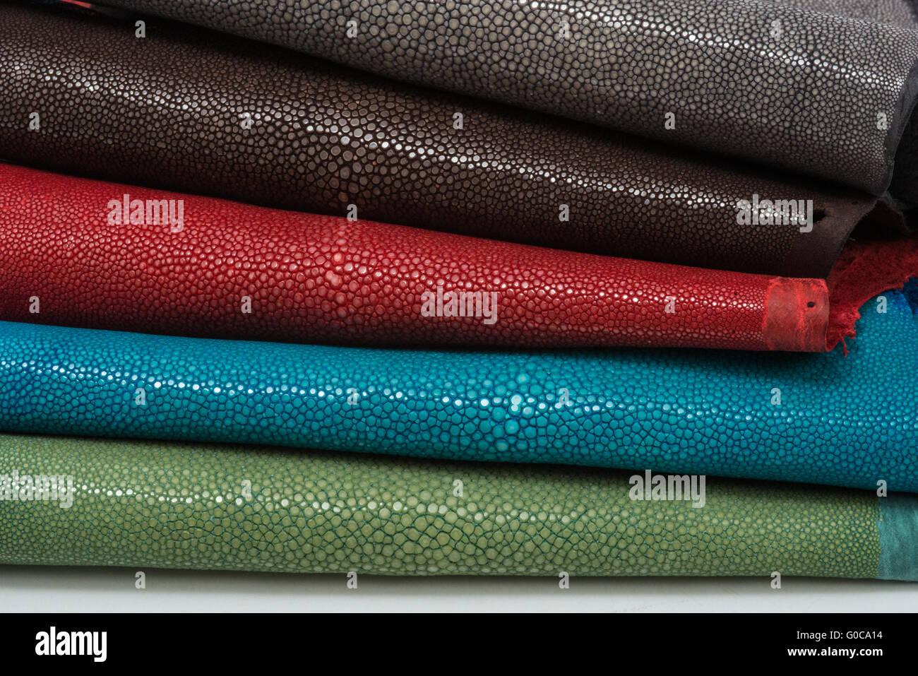 Stingray Exotic Leather Stockfotos & Stingray Exotic Leather Bilder ...