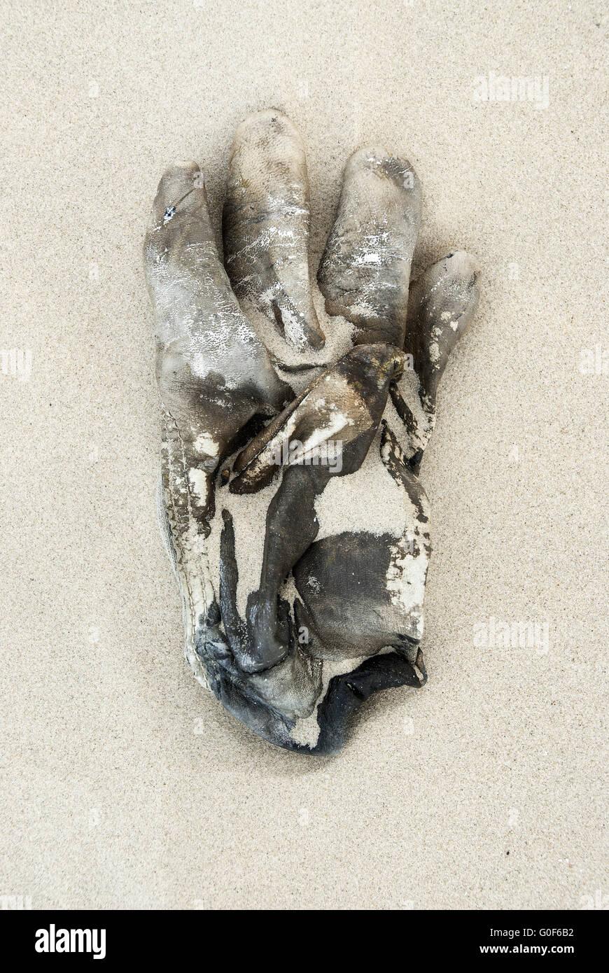 Handschuh Stockbild