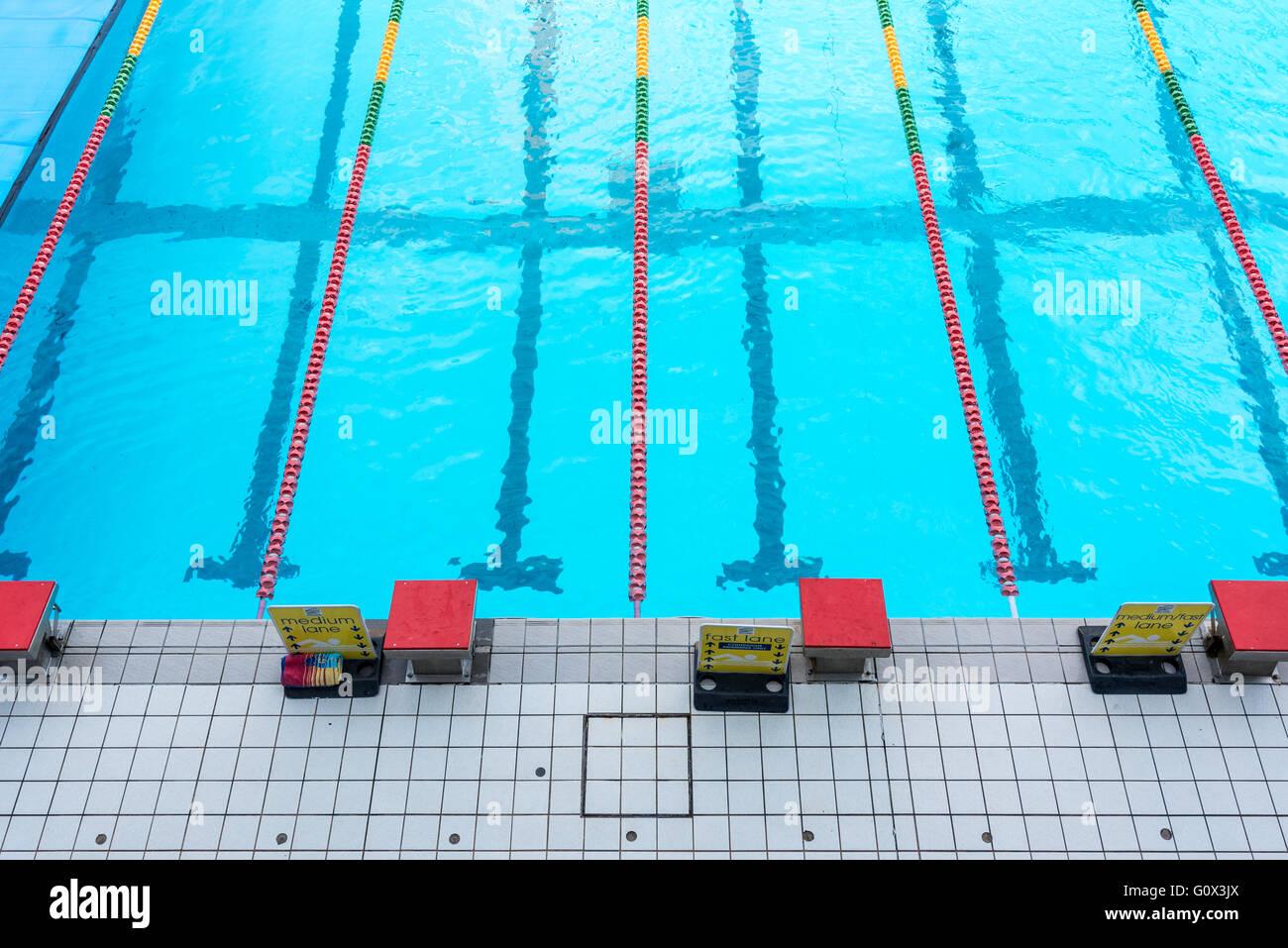 Swimming Pool-Starter-Blöcke Stockbild