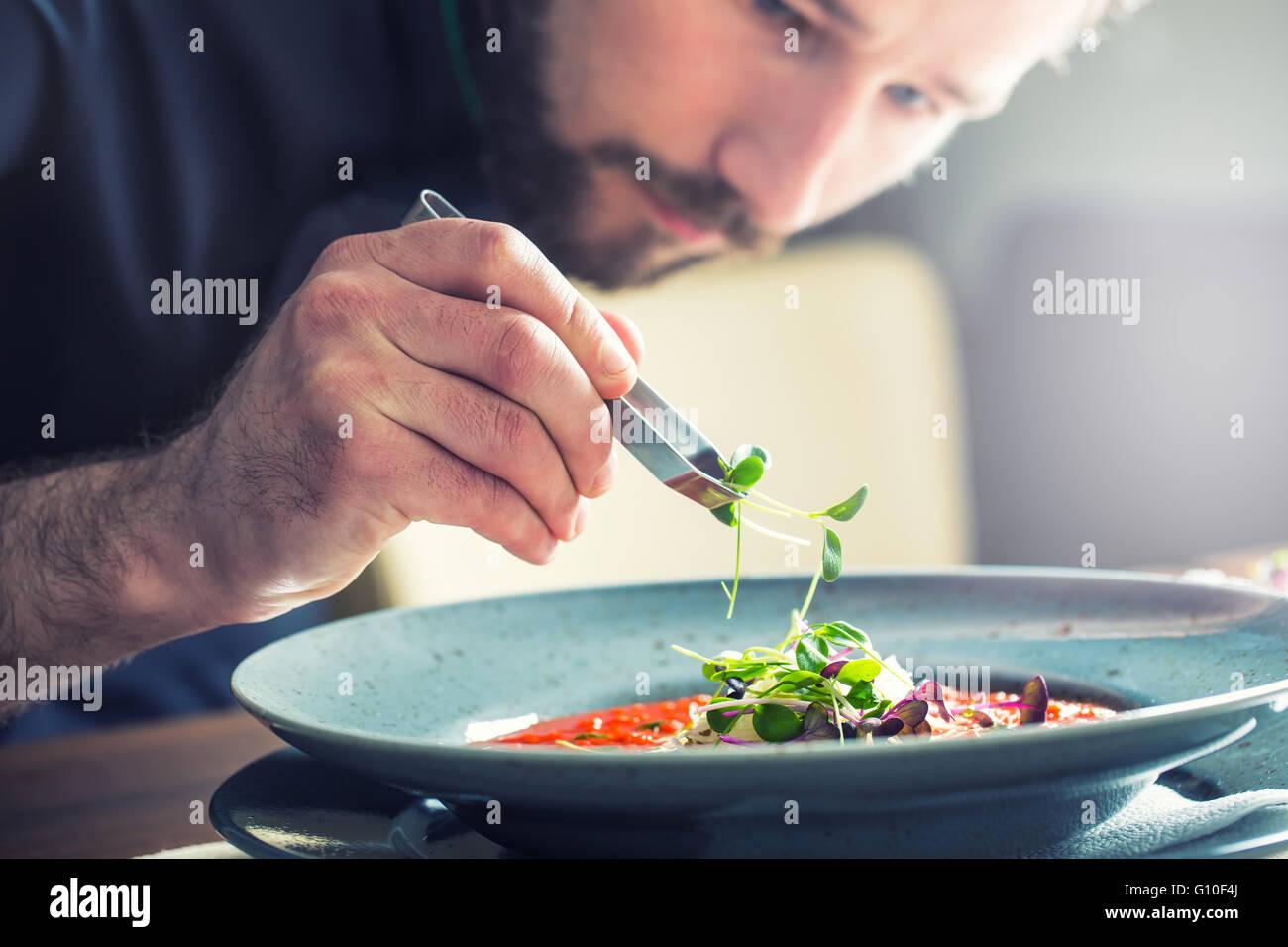 Küchenchef im Hotel oder Restaurant Küche kochen, nur die Hände. Er arbeitet an der Mikro-Kraut-Dekoration. Stockfoto
