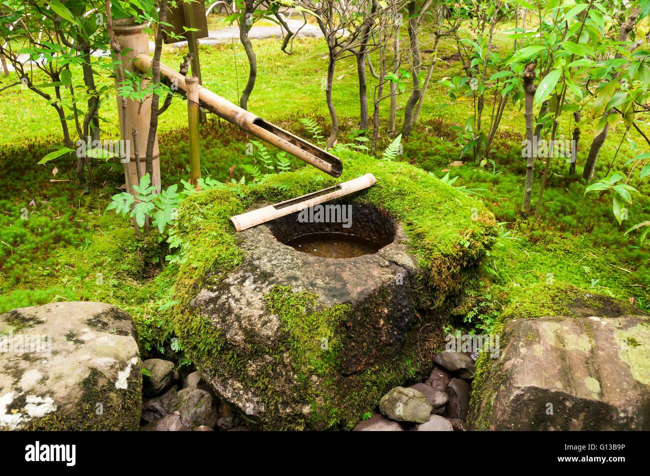 Japanische Brunnen Bambus Mit Moos Stockfoto Bild 103951618 Alamy