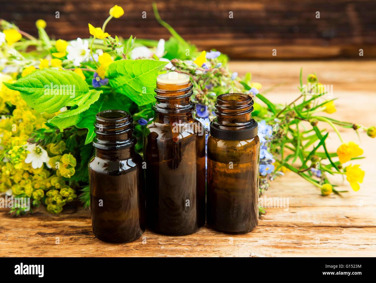 Alternative Kräutermedizin mit Heilpflanzen Essenz Flaschen Stockbild