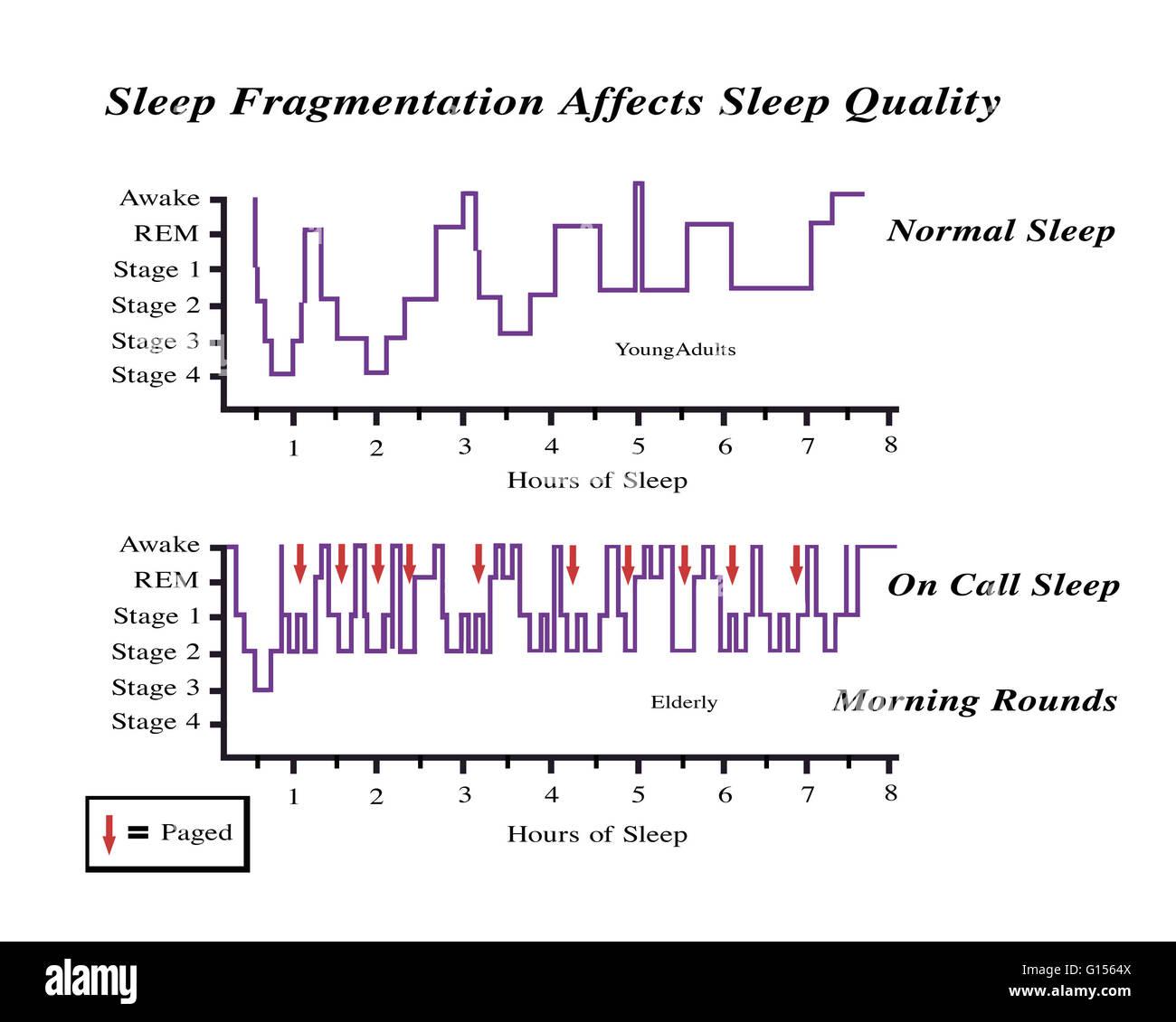 diagramm zur veranschaulichung der daten aus einer studie ber wie schlaf fragmentierung. Black Bedroom Furniture Sets. Home Design Ideas