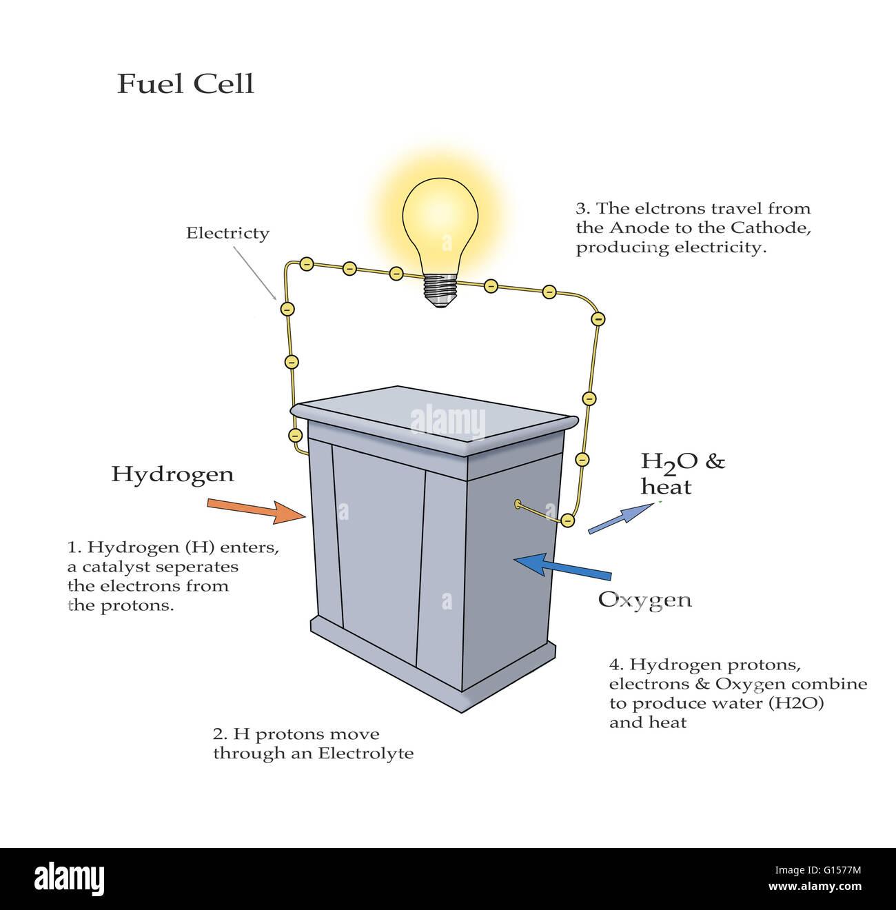 diagramm zur veranschaulichung wie eine brennstoffzelle nimmt in wasserstoff und sauerstoff und. Black Bedroom Furniture Sets. Home Design Ideas