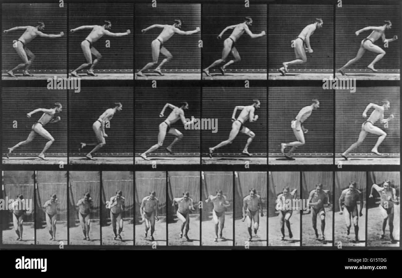 Muybridge menschlichen Fortbewegung, Mann läuft, 1887. 24 Bilder (12 ...