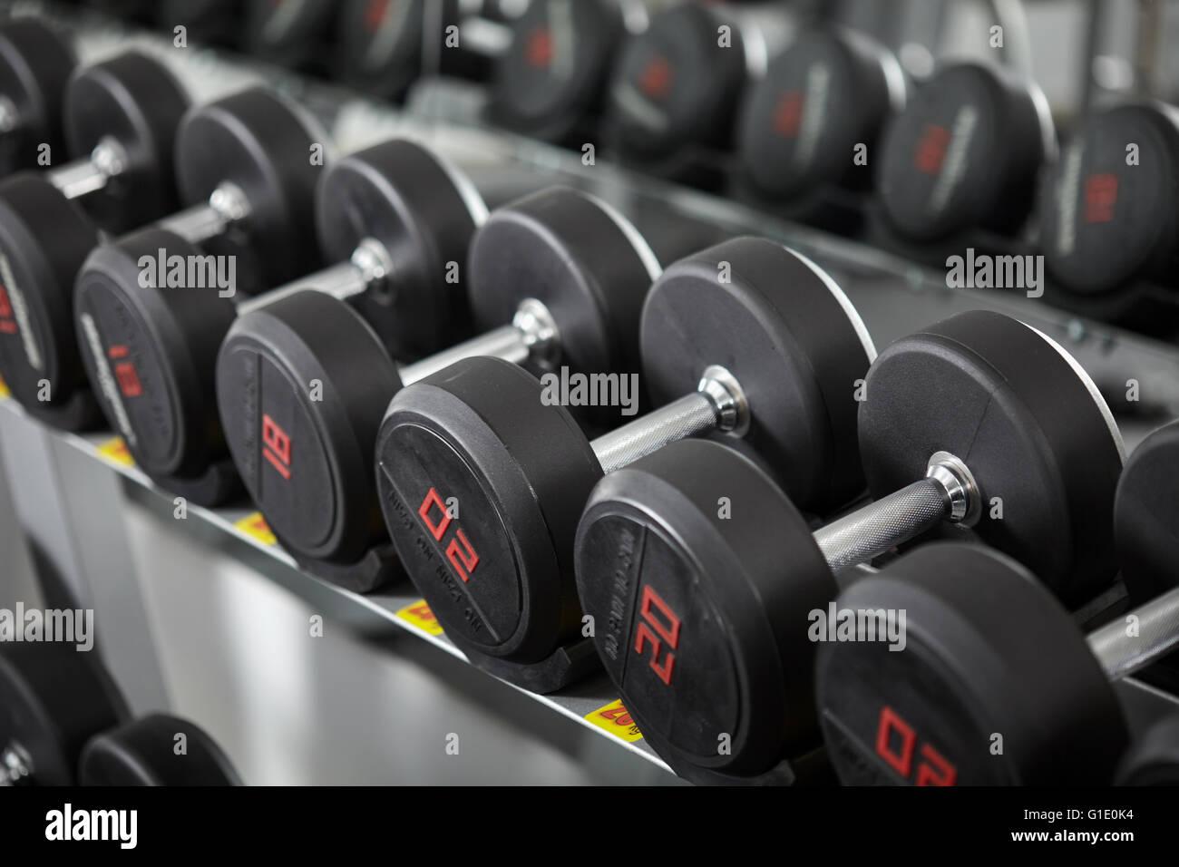 Reihen von neuen Hanteln im Fitnessstudio, auf dem Gestell Stockbild
