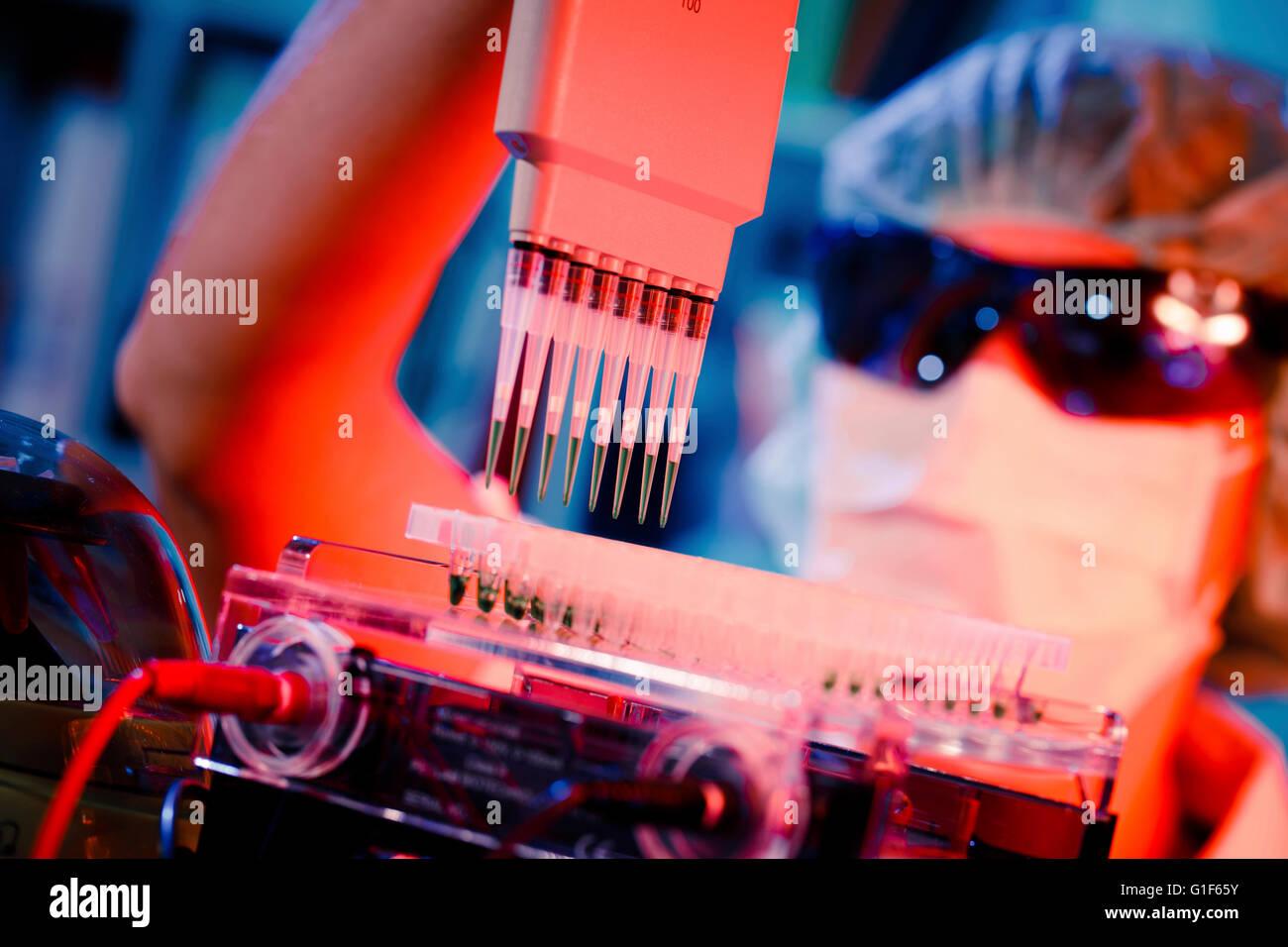 -MODELL VERÖFFENTLICHT. Laborantin mit Multi-Pipette und Multiwell. Stockbild