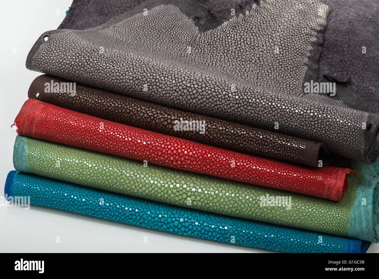 Fein Stingray Färbung Seite Fotos - Malvorlagen-Ideen ...