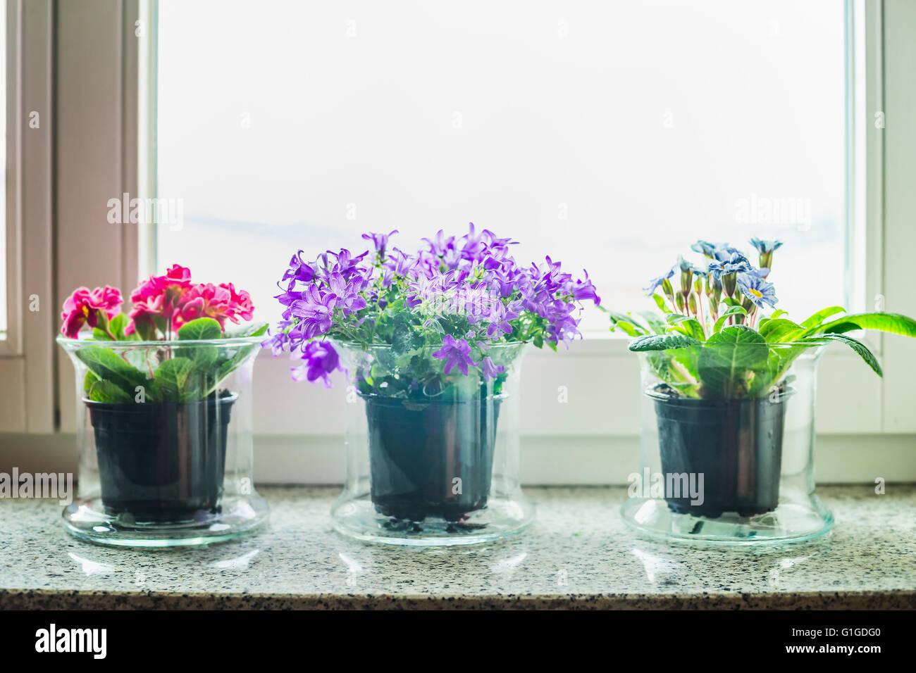 Schone Dekoration Mit Glas Blumen Topfen Auf Der Fensterbank