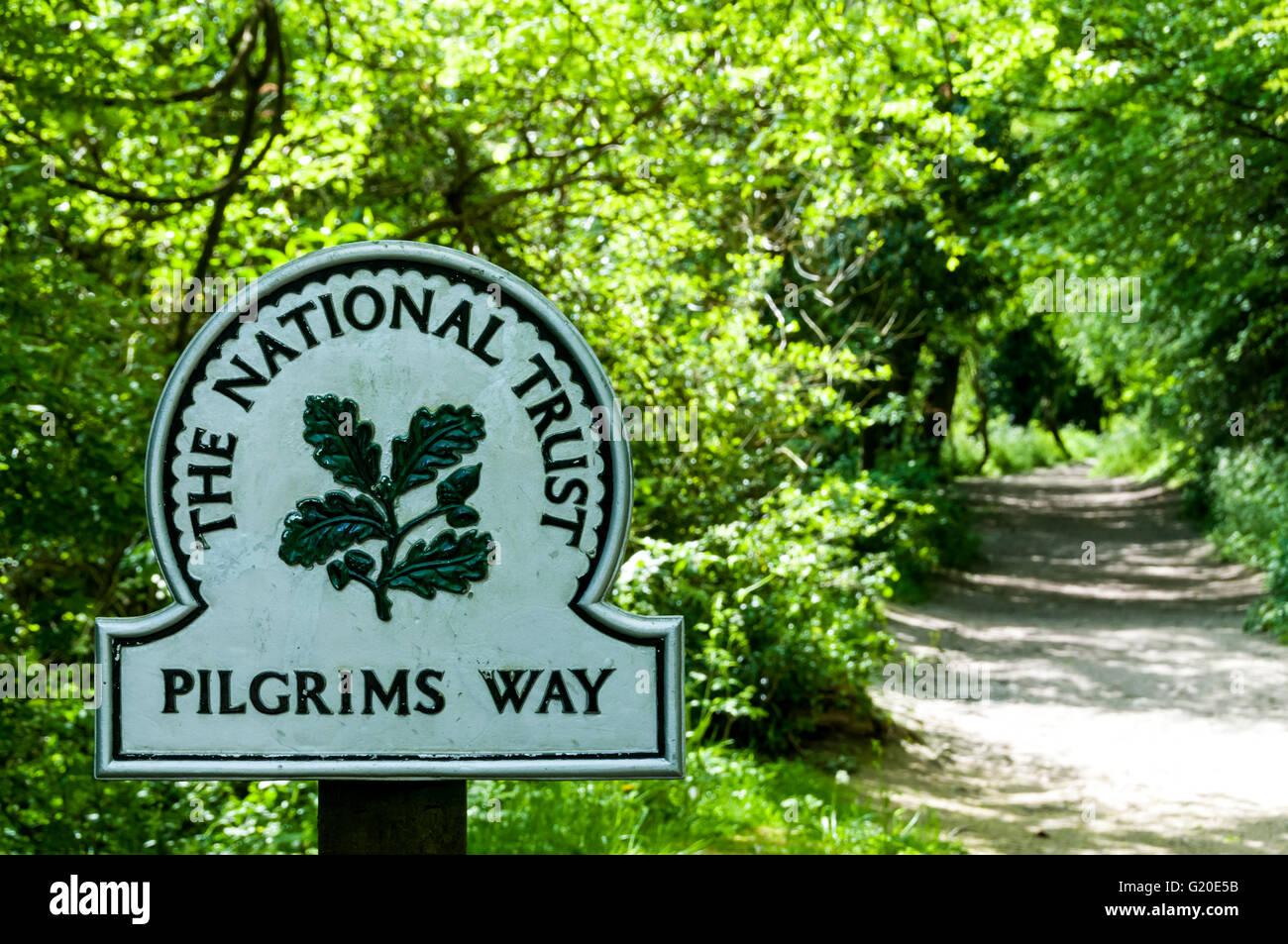Bewaldeten Teil der Pilger-Weg auf den North Downs im Süden Englands. Stockbild