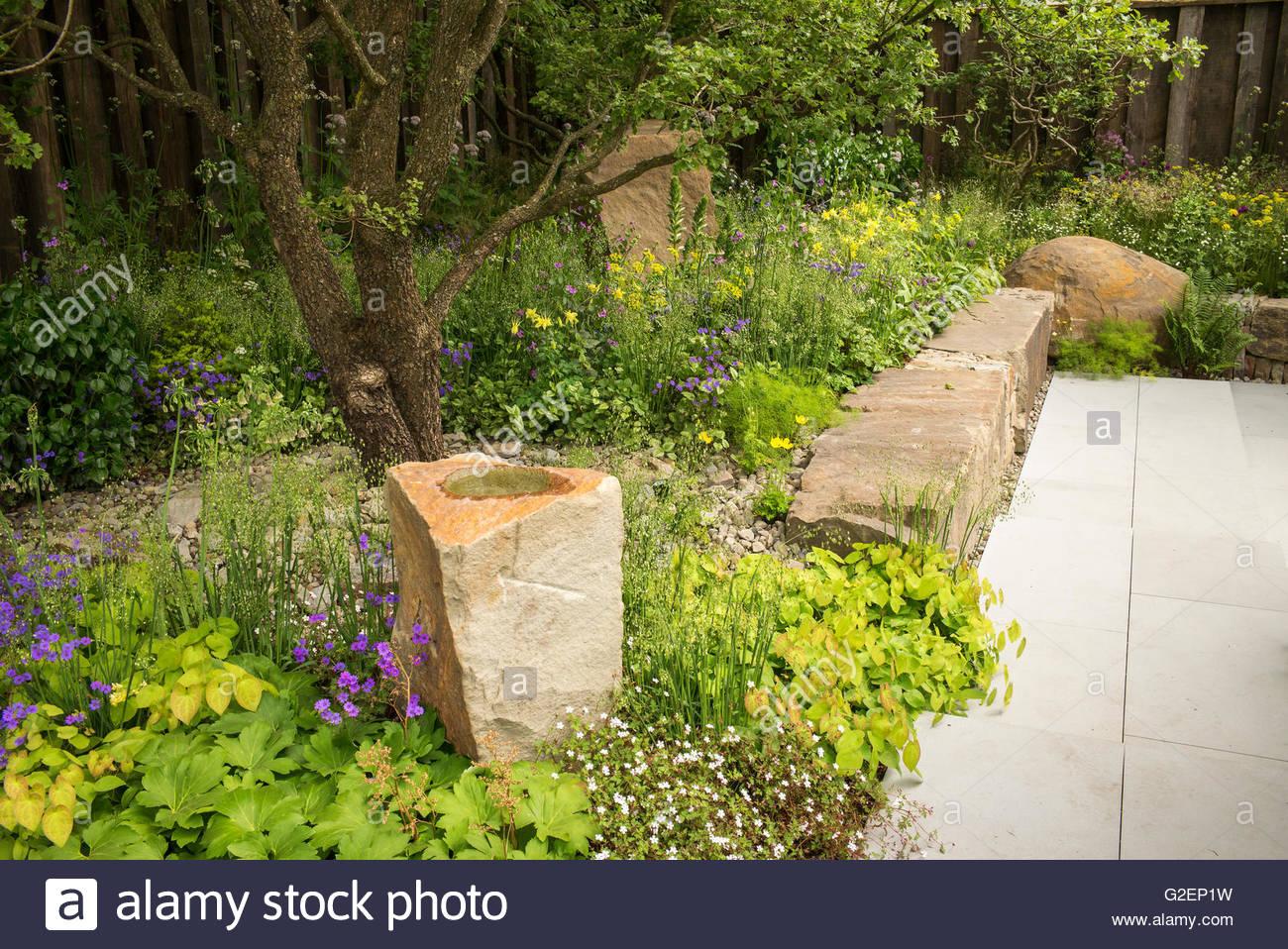 wald zu pflanzen, wand stein, geröll und terrasse in der m & g