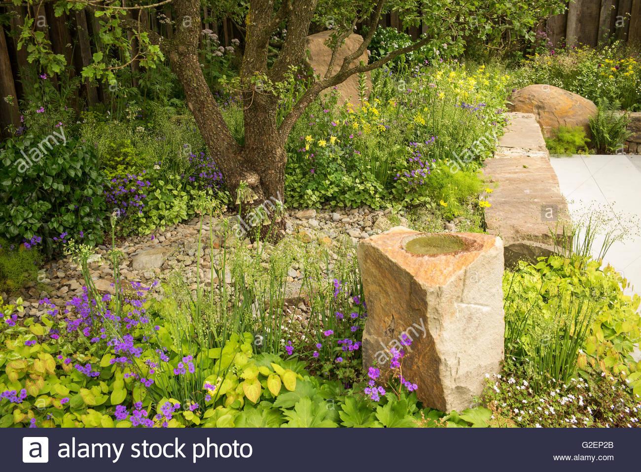 wald zu pflanzen, steinmauer und felsbrocken in der m & g garten