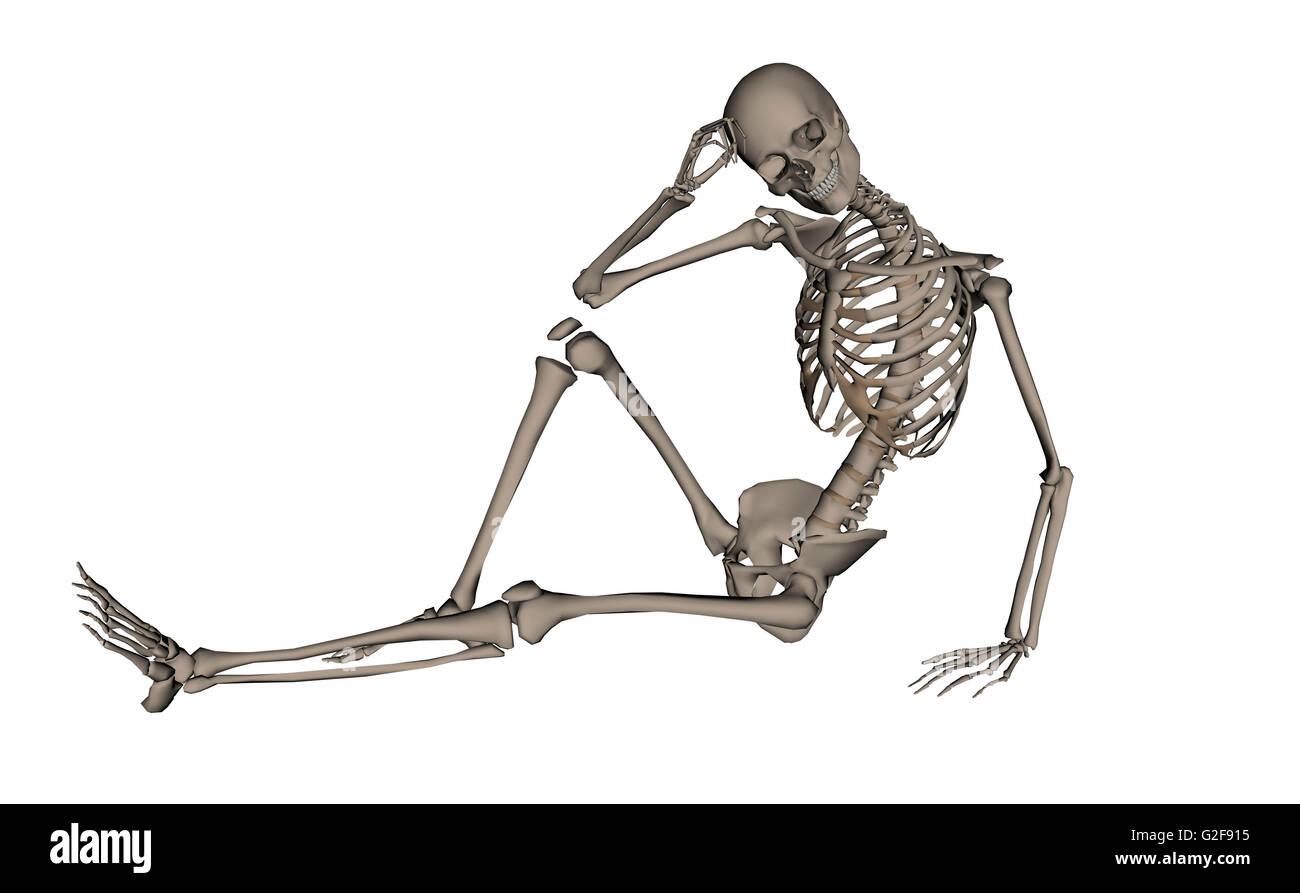 Vorderansicht eines menschlichen Skeletts posieren, isoliert auf weißem Hintergrund. Stockbild