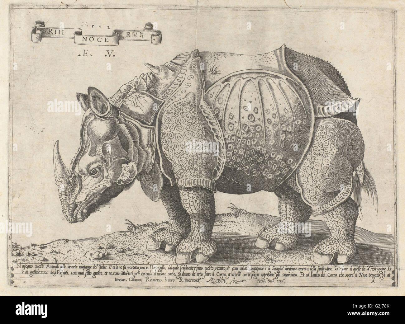 Nashorn, Enea Vico, Albrecht Dürer, 1533-1567 Stockbild