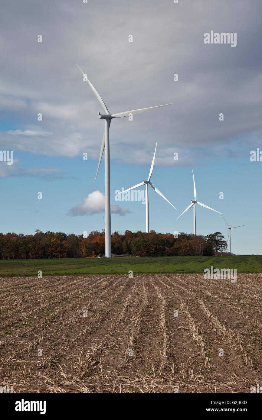 Windmühlen in Ackerland von Südwest-Ontario (in der Nähe von Lake Erie), Ontario, Kanada. Stockbild