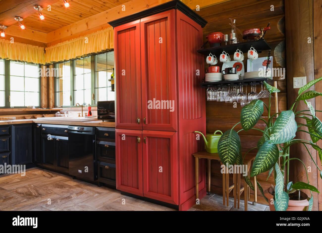 Rot schwarz Holz Küchenschränke plus Dieffenbachia Grünpflanze im ...