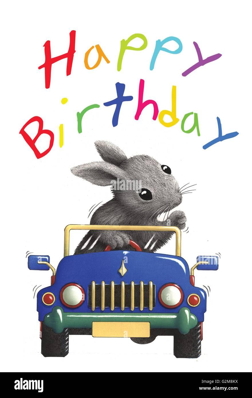 Kaninchen Im Auto Und Geburtstag Wunscht Zeichen Auf Weissem