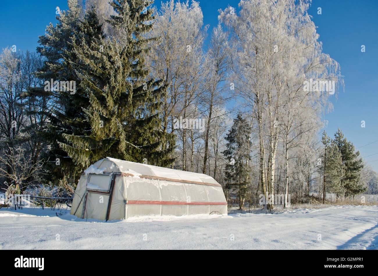 Plastischen Gewachshaus Gewachshaus Im Winter Abgedeckt Bauernhof