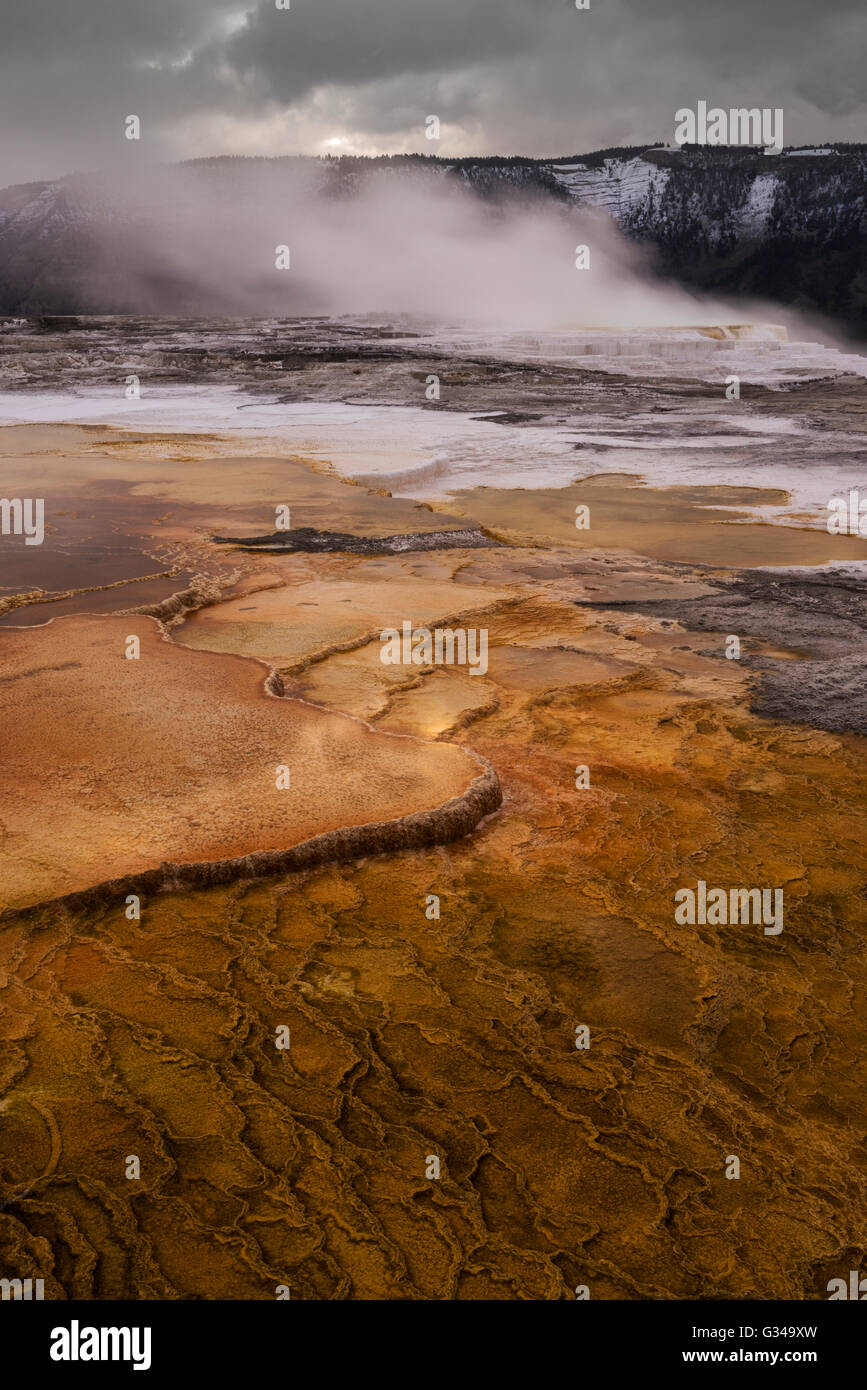 USA, Rockie Mountains in Wyoming, Yellowstone National Park, UNESCO, Welterbe, Mammoth Hot Springs Stockbild