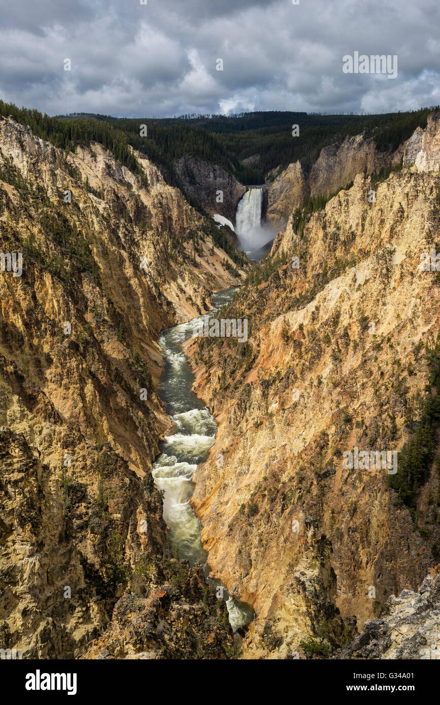 USA, Rockie Mountains in Wyoming, Yellowstone National Park, UNESCO, Welterbe, Lower Falls Stockbild