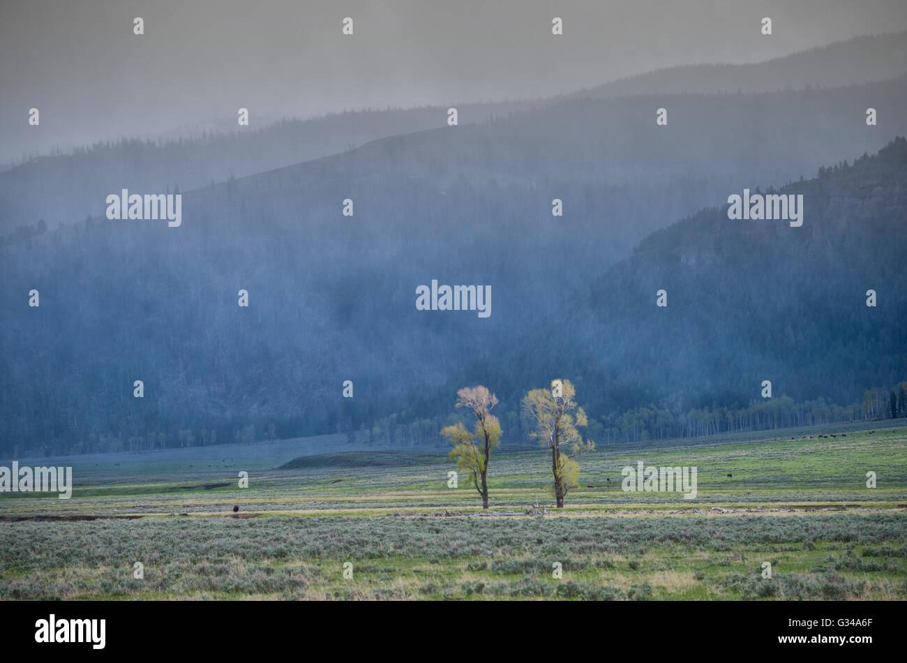 USA, Rockie Mountains in Wyoming, Yellowstone National Park, UNESCO, Welterbe, Lamar Valley während eines Gewitters Stockbild