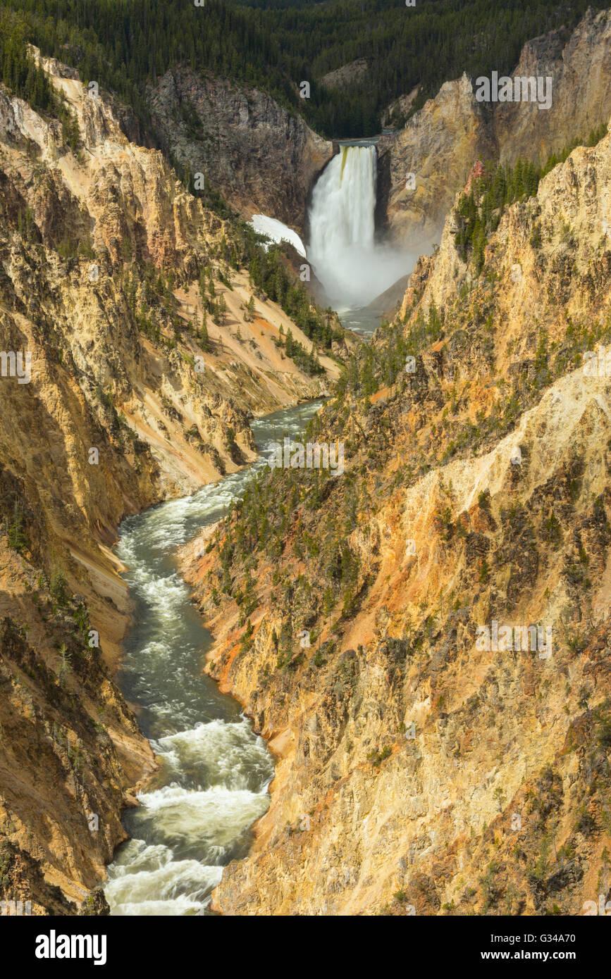 USA, Rockie Mountains in Wyoming, Yellowstone, Nationalpark, UNESCO, Welterbe, Lower Falls des Yellowstone River, Stockbild