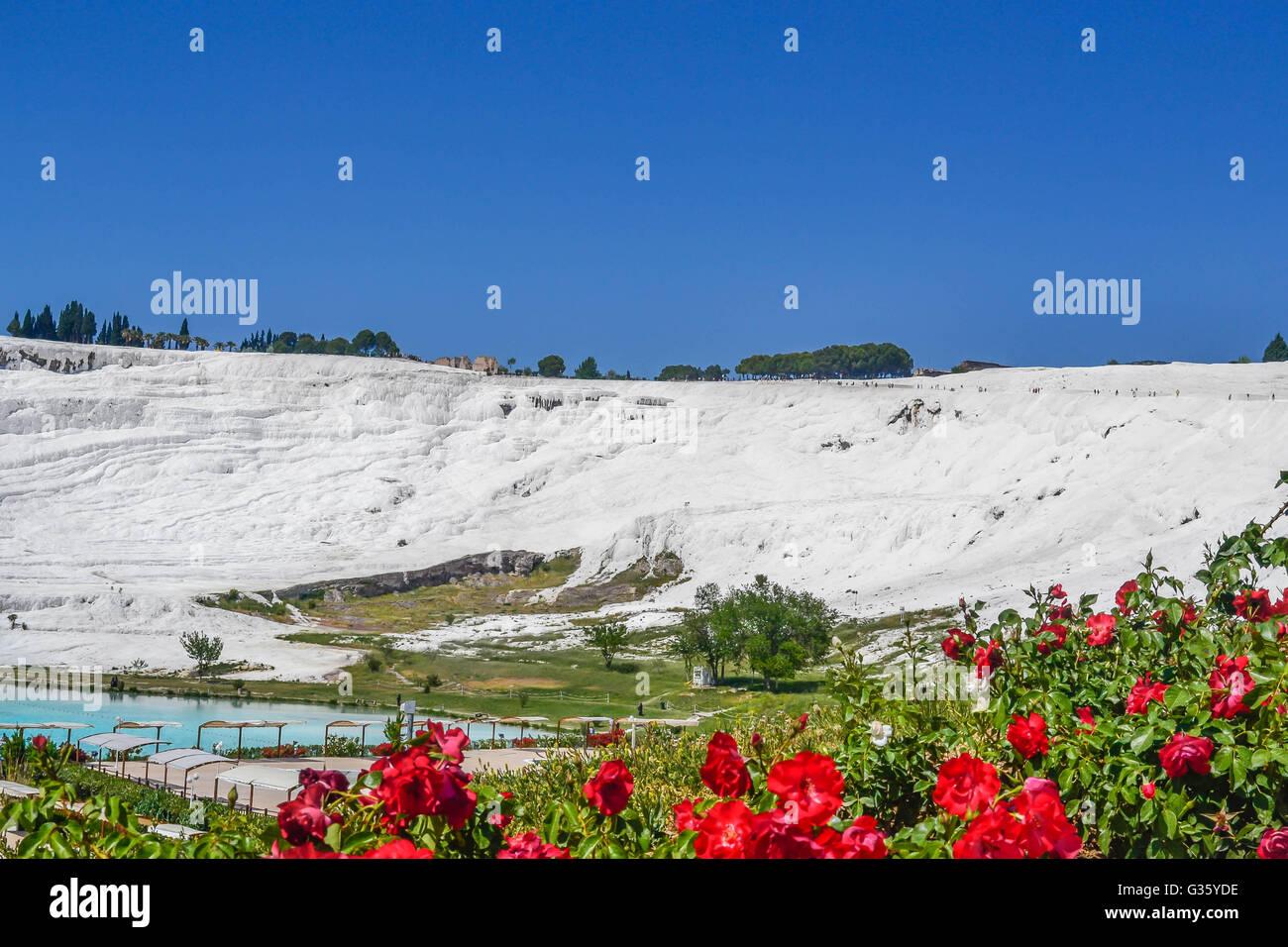 Türkei, Pamukkale, Reisen, erstaunlich zu sehen, weiß, Mineral Bad, rosa Blüten, blaue Wasser, heiße Stockbild