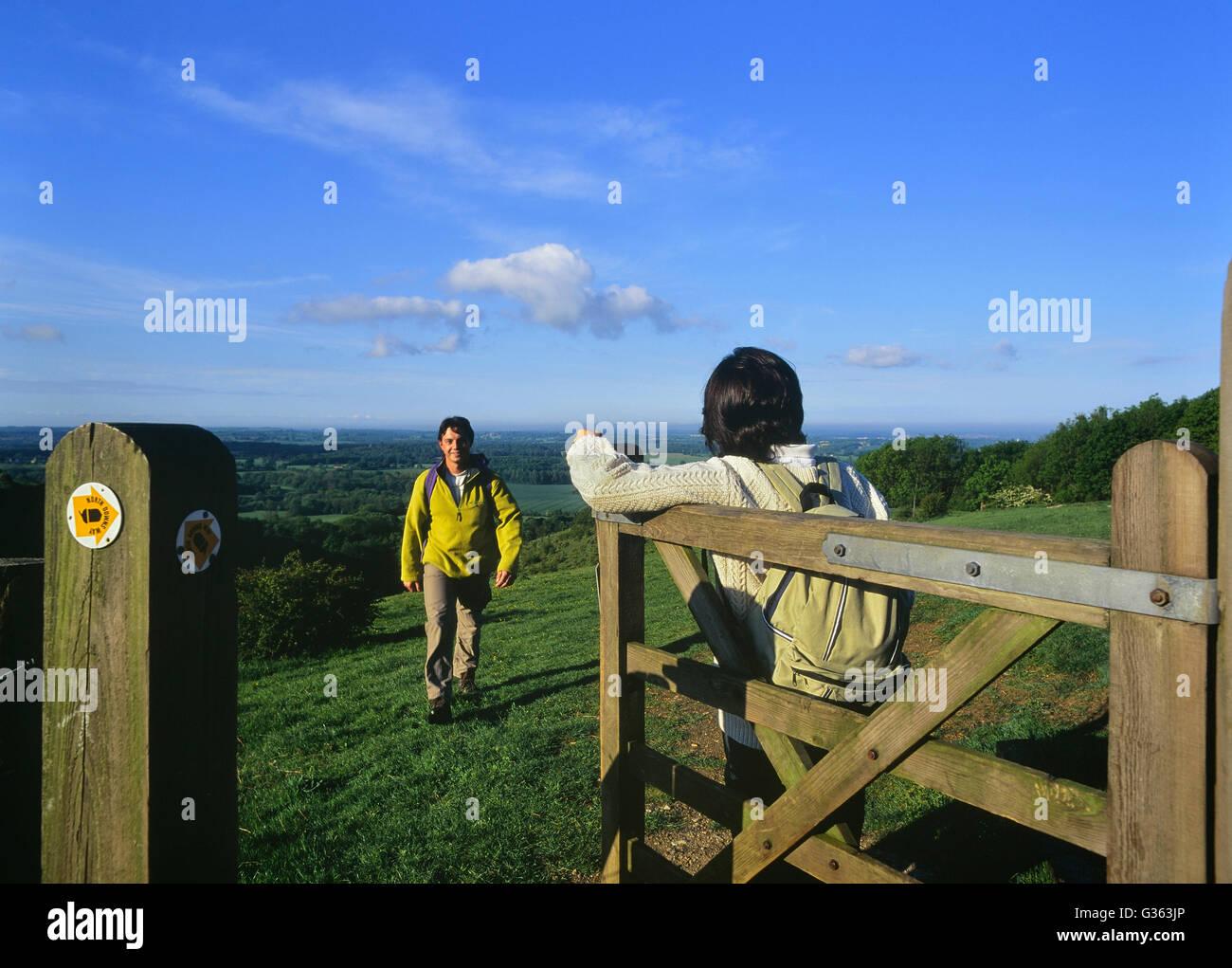 Wanderer zu Fuß die North Downs Way. Wye Downs. Kent. England. UK Stockbild