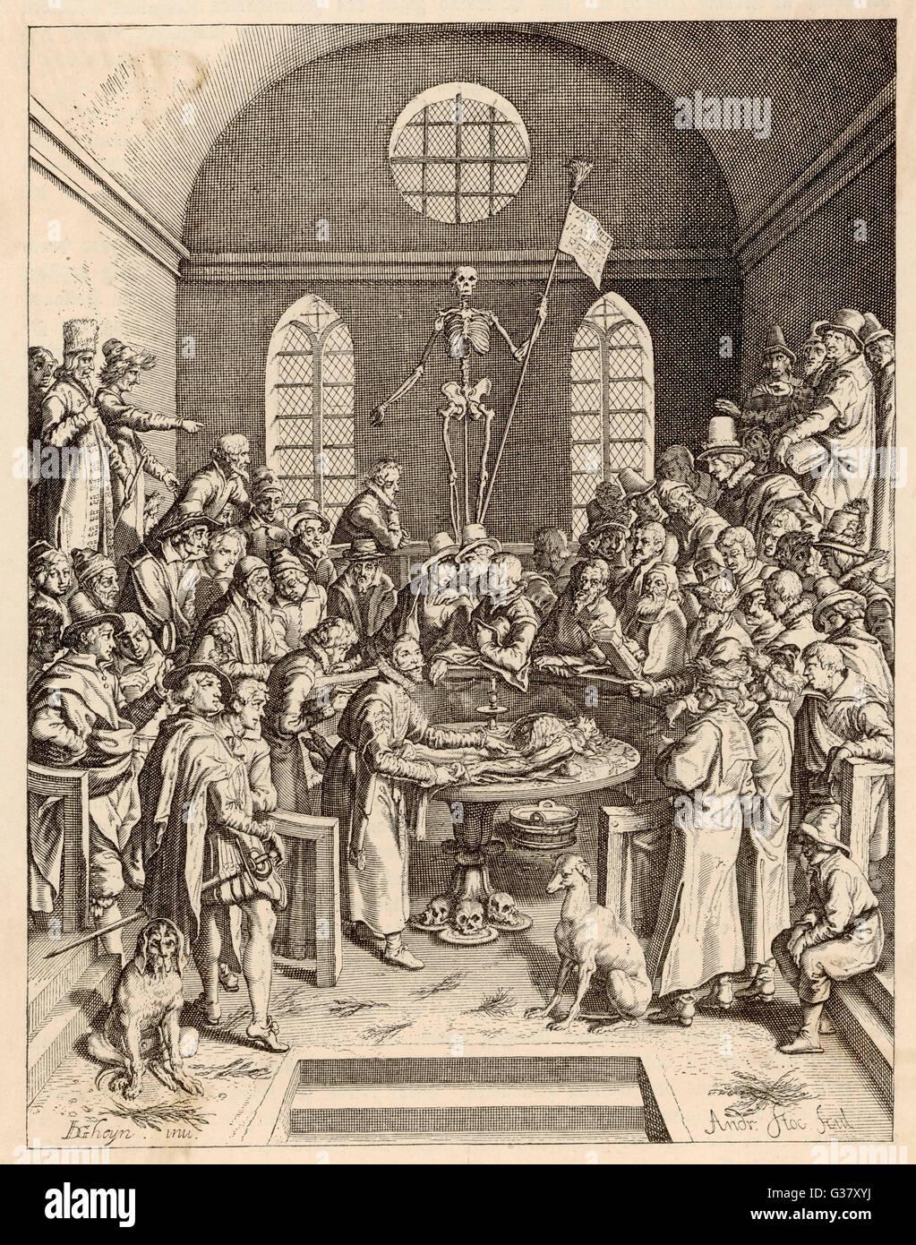 Anatomie-Demonstration.          Datum: 16. Jahrhundert Stockbild